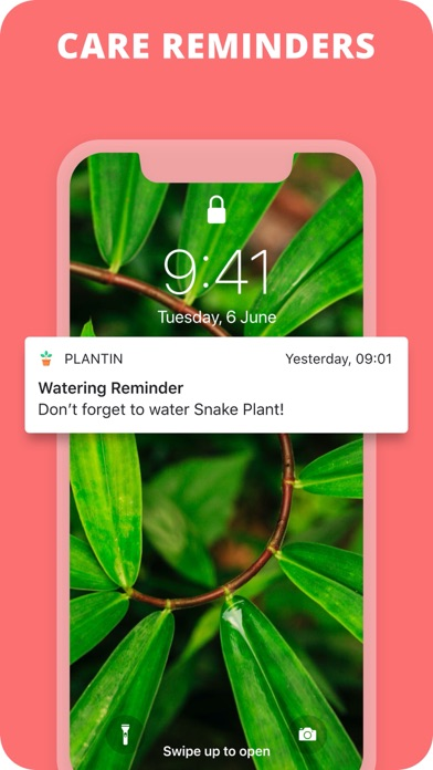 Download PlantIn: Plant Identifier for Android