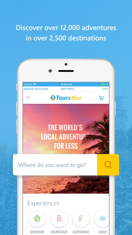 Tours4Fun Tours & Travel