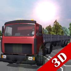 Activities of Traffic Hard Truck Simulator