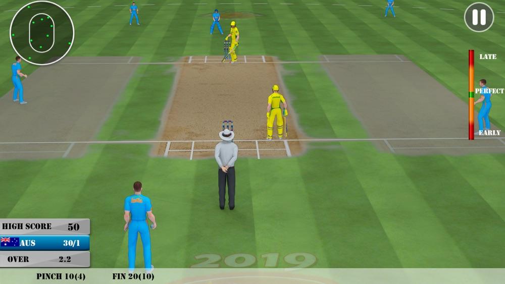 Play Cricket Games 2019 hack tool