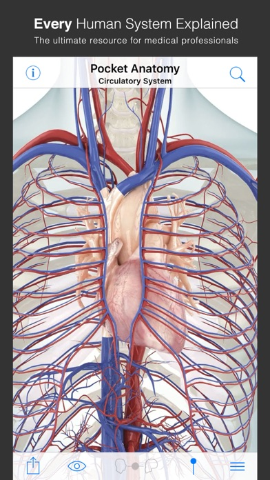 Screenshot #2 pour Pocket Anatomy.