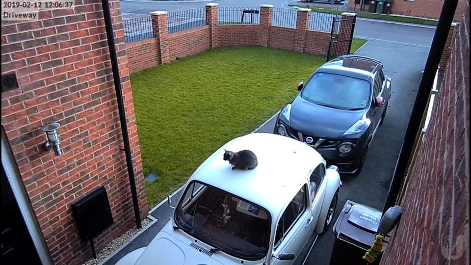 Screenshot #8 for CCTV Viewer