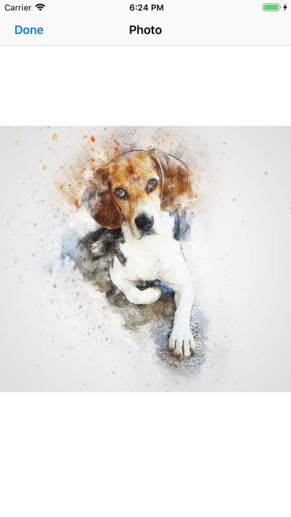 Pup Portraits screenshot-8