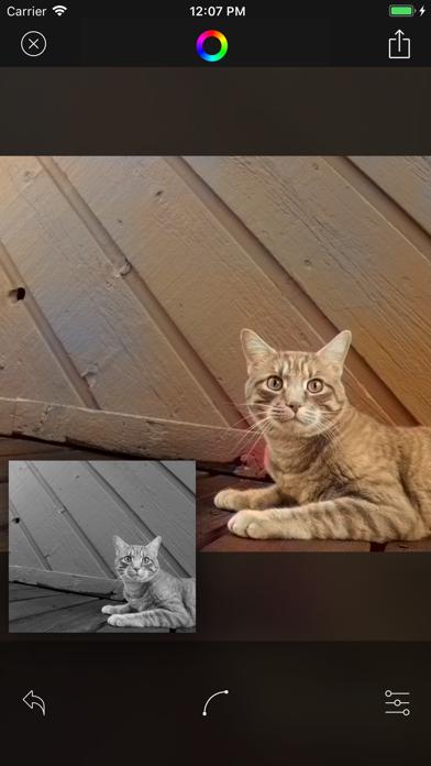 Deep Color - AIを利用した自動カラーのおすすめ画像5