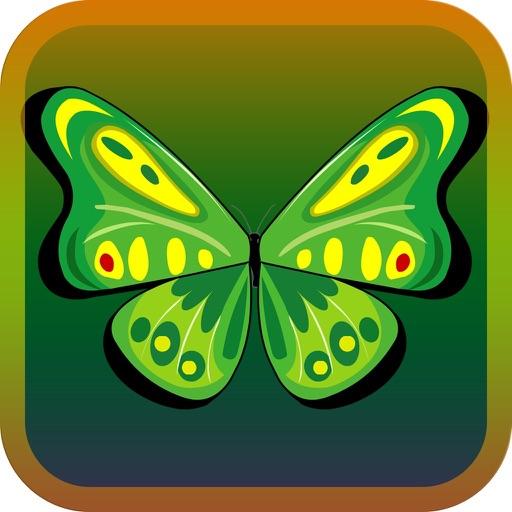ButterflyLink