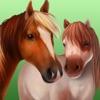 Horse World - 我的骏马 可爱