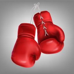 Boxing Superstar