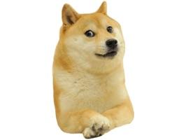 Doge Lore Stickers