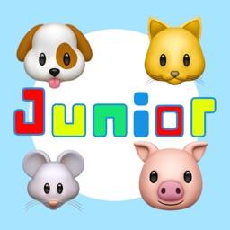 ECHO Junior