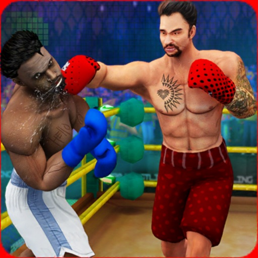 Play Boxing Games 2019