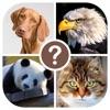 動物クイズ - 動物を推測