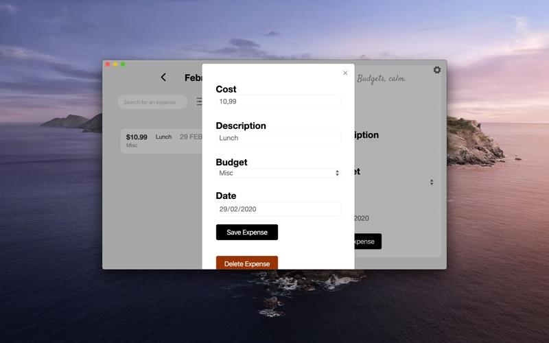 Budget Zen. скриншот программы 4