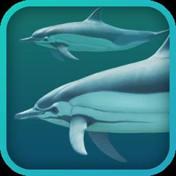 Ícone do app Dolphins 3D