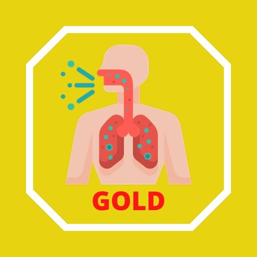 GOLD Criteria for COPD