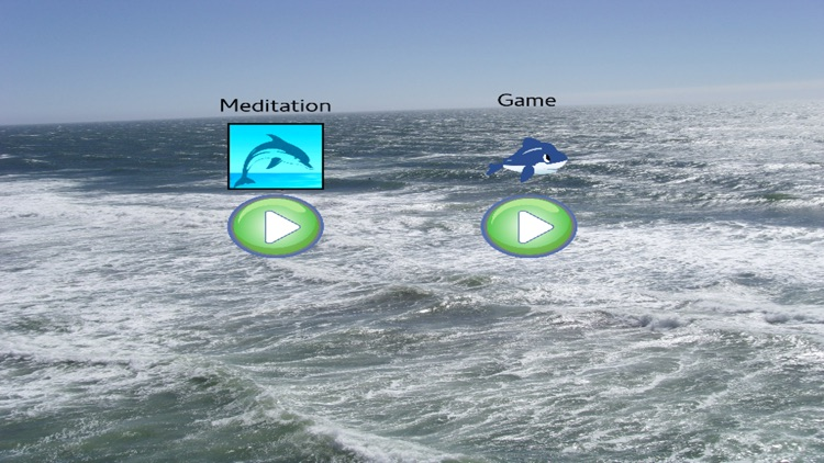 Meditation - Dolphins Whales