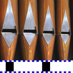 Organ Tuner
