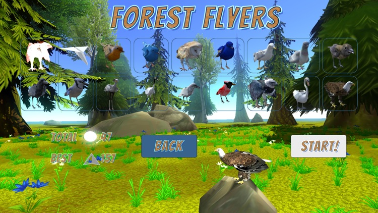 Forest Flyers
