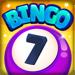 Bingo Town Hack Online Generator