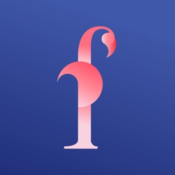 Flamingo Shop