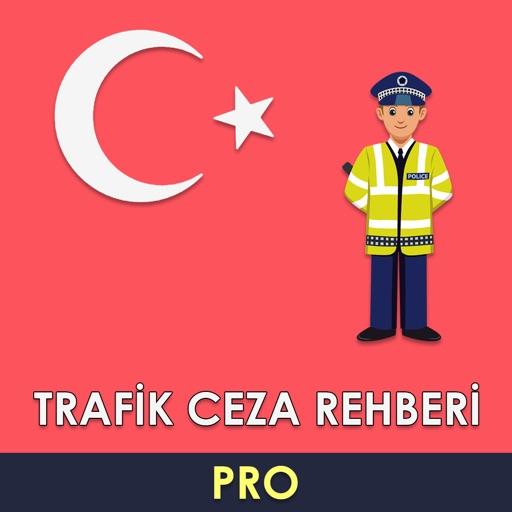 Trafik Ceza Rehberi 2020 Pro