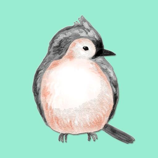 Southeast Bird Stickers