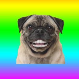Animated Dog Stickers