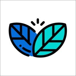 cloe - skin care diary
