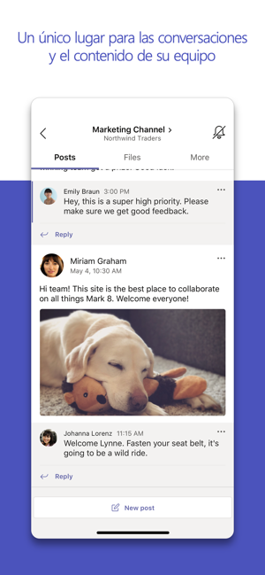 ‎Microsoft Teams Screenshot