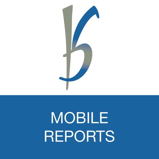 B&S Reports