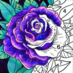 Coloring Book! Paint by Number