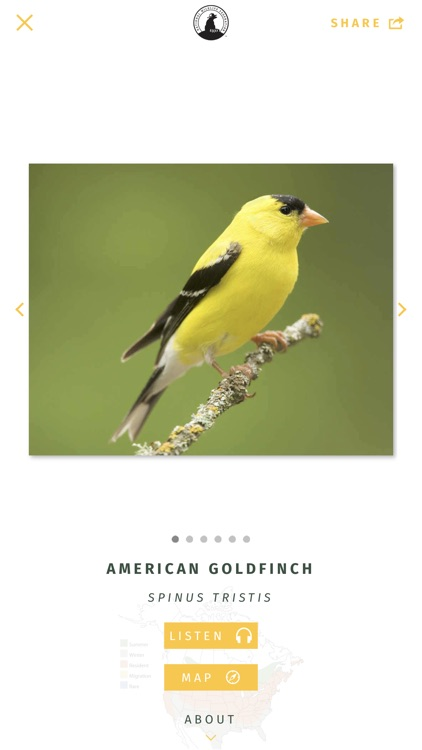 NWF Guide to Birds