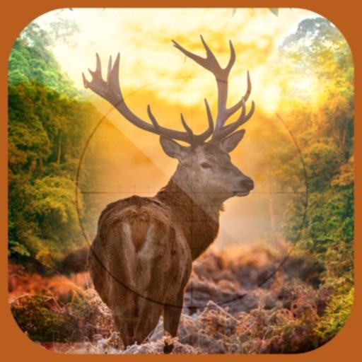 3D Ultimate Deer Hunter -