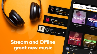 cancel Audiomack-New Music, Save Data subscription image 2