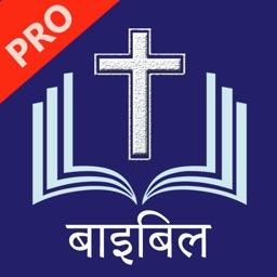 Hindi Bible Pro - हिंदी बाइबिल