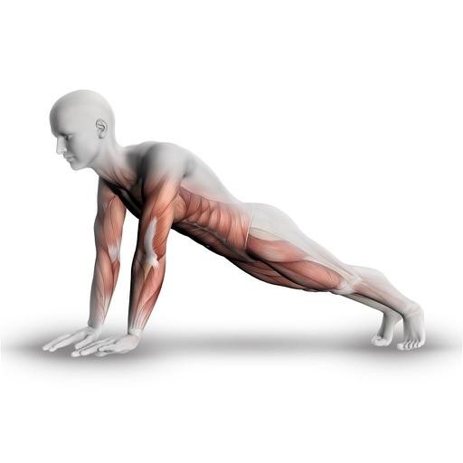 Plank - 30 Days of Challenge