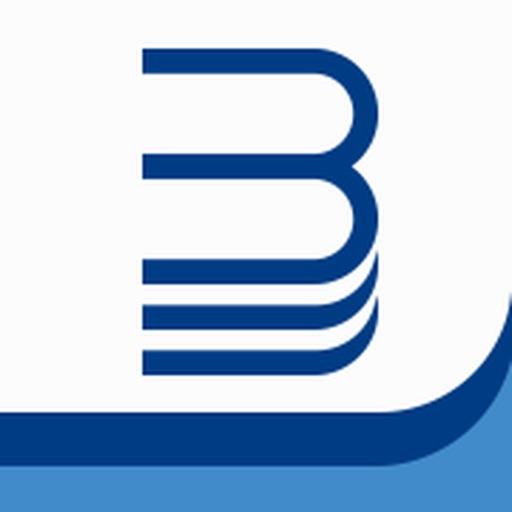 BSM Mobile