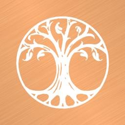 Copper Branch USA