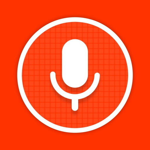 Voice Recorder - voice to text
