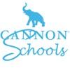 Cannon Financial Institute