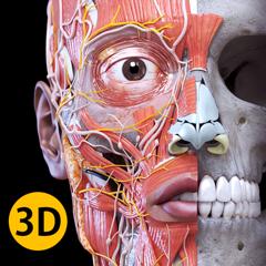 Anatomy 3D Atlas