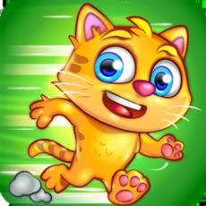 Activities of Catch a Cat
