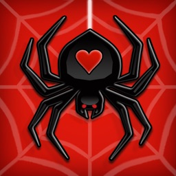 Spider Solitaire ∙ Card Game