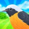 鳥コンボ! - iPadアプリ