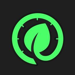 绿叶-网络测速器