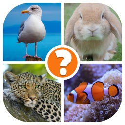 Animals Quiz - Word Pics Game