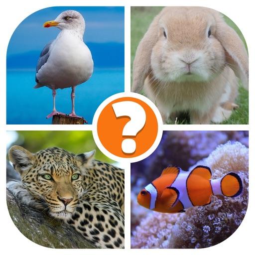 Animals Quiz - Word Pics Game iOS App