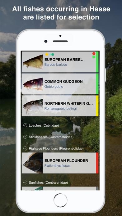 Screenshot of Fishguide Hessia App