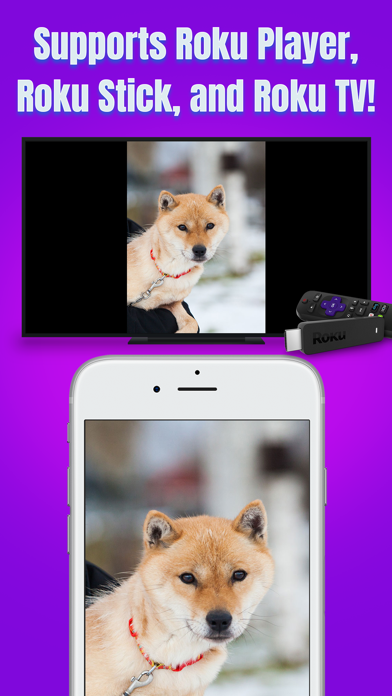 download Air Mirror for Roku TV apps 4