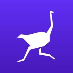 Ostrich: Build Money Habits