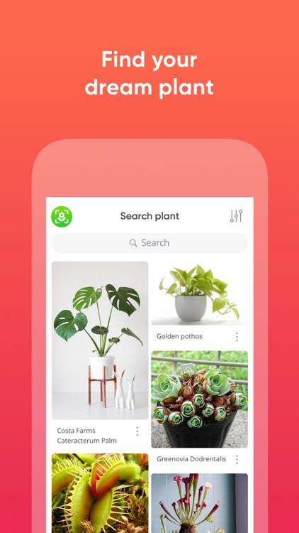 ThePlantMe: Plant Identifier screenshot-4